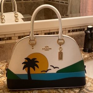 Coach Katy Satchel with Sunset